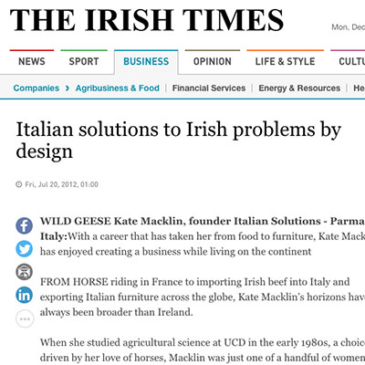 Italian Solutions in the Irish Times